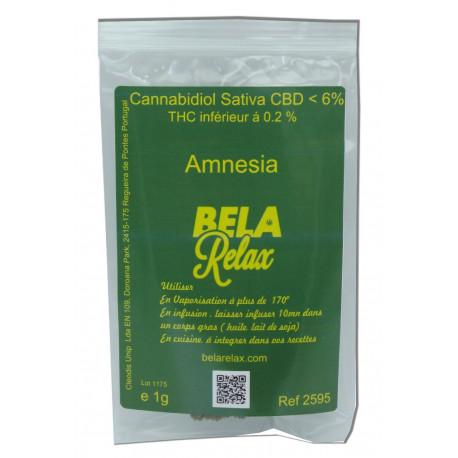 Amnesia Sachet 1g, Fleur CBD Indoor