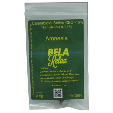 Amnesia une fleur connue pour les fous rires