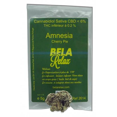 Amnesia tête de Cherry Pie Fleurs CBD Outdoor